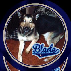 Blade-3