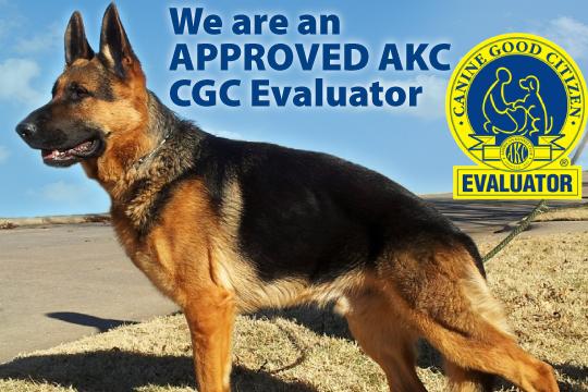 CGC evaluator in Abilene, TX. Yahshua Hawkins. vanburen Shepherds 325-660-9142