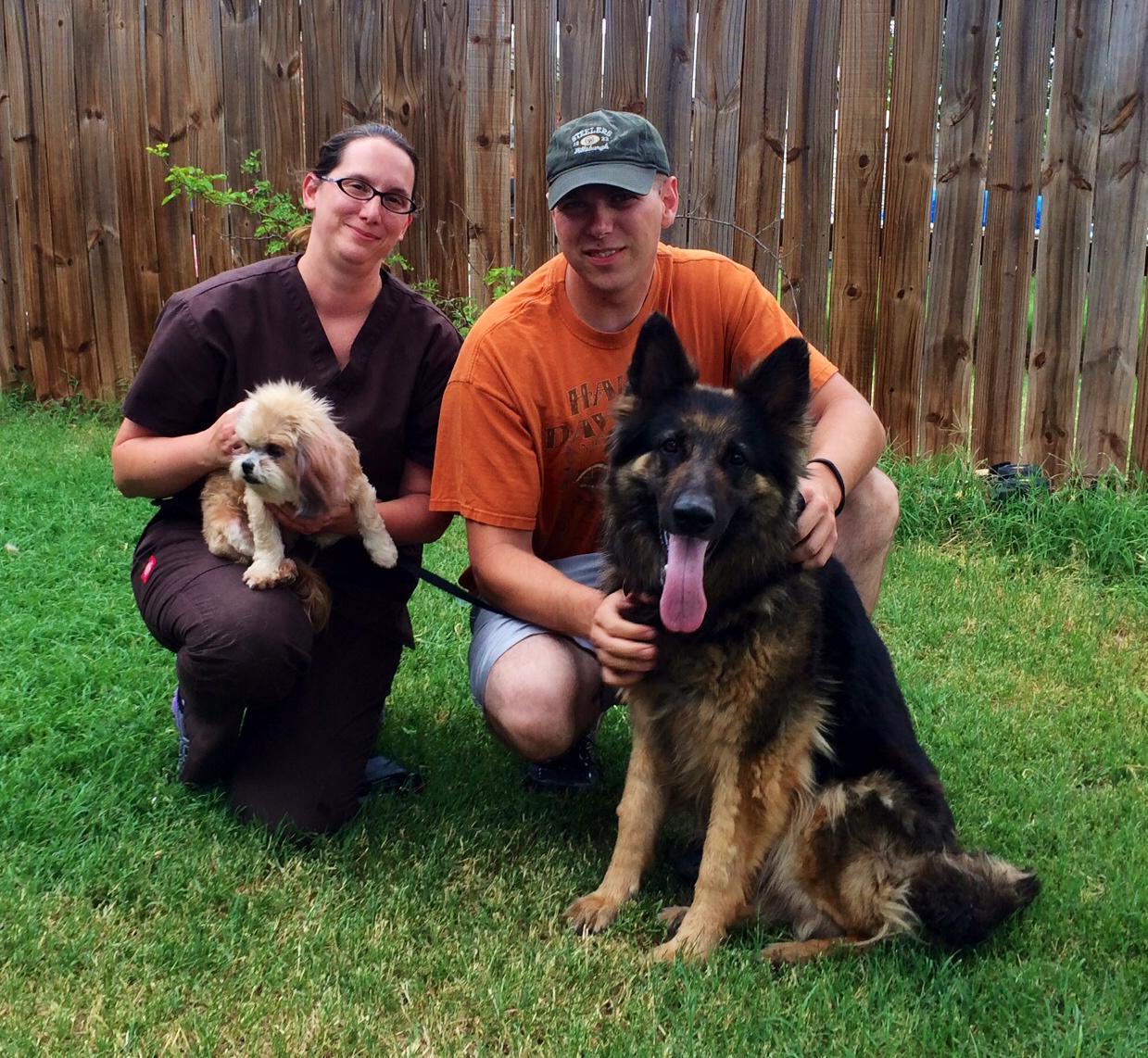 German shepherd rescue in Abilene, TX